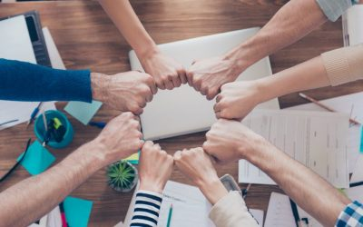 Organizacija rada timova OM u kriznim uvjetima društva